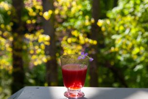 Rhubarb Black Currant Margaritas